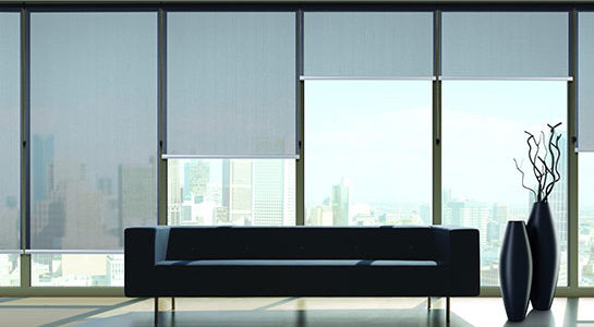Roller Shade by Blinds By Design Los Angeles
